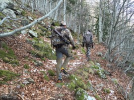 02a-marche-bois-chasse-isard-pyrenees-ovini-expeditions.JPG