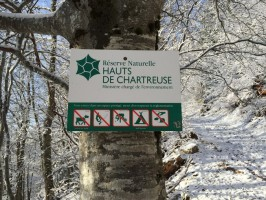 1-02-chasse-chamois-chartreuse-ovini-expeditions.JPG