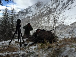 1-03-reperage-jumelle-chamois-alpes-nord-chasse-steve-ovini-expeditions.JPG