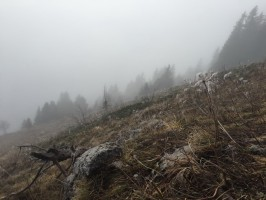 1-10-meteo-deplorable-chasse-chamois-chartreuse-ovini-expeditions.jpg