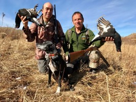 1f-chasse-tetras-amis-chasse-tetras-perdrix-ovini-expeditions-kazakhstan-.jpg