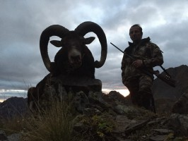 2014-chasse-mouflon-ovini-expeditions-france.jpg