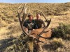 a-anthony-ovini-guide -argentin-chasse-cerf-brame-ovini-expeditions.jpg