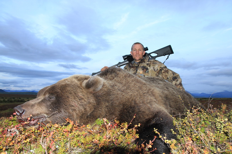 Ours brun  Kamchatka
