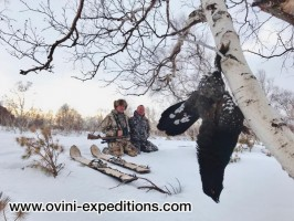 b-6-ovini-expeditions-Kamtchatka-chasse-extreme-ours-grand-tetras-bec-noir.jpg