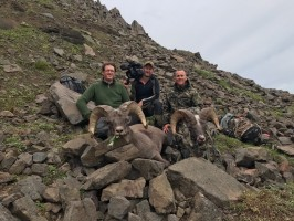 c9_chasse-Kamtchatka-mouflon-nivicola-film-seasons-ovini-expeditions.jpg