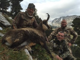 chamois-jim-shockey-chasse-gibier-montagne--ovini-expeditions-.jpg
