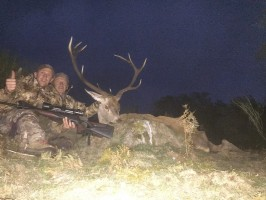 chasse-cerf-espagne-ovini-expeditions.jpg