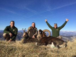 chasse-en montagne-france-ovini-expedition-sbenoit-pascal-anthony-ovini.JPG