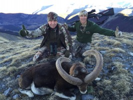 chasse-gibier-montagne-france-ovini-expeditions-pascal-poyart.jpg