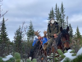 chasse-moose-reussie-retour-camp-ovini-expeditions-colombie-britannique.jpg