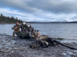 chasse-reussie-moose-colombie-britannique-ovini-expeditions.jpg