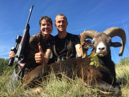 denise-mouflon-chasse-gibier-montagne-france-ovini-expeditions.jpg