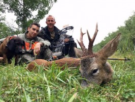 e-a-chasse-chevreuil-ete-france-ovini-expeditions.jpg