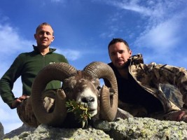 f-sebastien-mouflon-or-chasse-gibier-montagne-france-ovini-expeditions.jpg