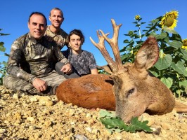 h3-chasse-chevreuil-ete-france-ovini-expeditions.jpg
