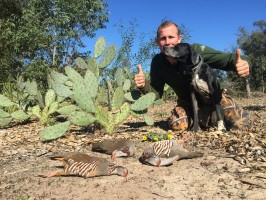 j-perdrix-gambra-chasse-chien-arret-maroc-ovini-expeditions-anis-efficace.JPG