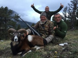 k-mouflon-jim-shockey-chasse-gibier-montagne-ovini-expeditions.jpg