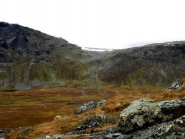 ovini-expeditions-petit-gibier-paysage-suede.JPG
