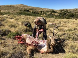 r-preparation-viande-chasse-cerf-argentine-ovini-expeditions.jpg