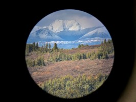 territoire-preserve-chasse-moose-ovini-expeditions.jpg