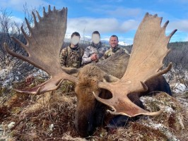 trophee-moose-chasse-colombie-britannique-ovini-expeditions.jpg