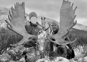 trophee-moose-ovini-expeditions-chasse-colombie-britannique.jpg