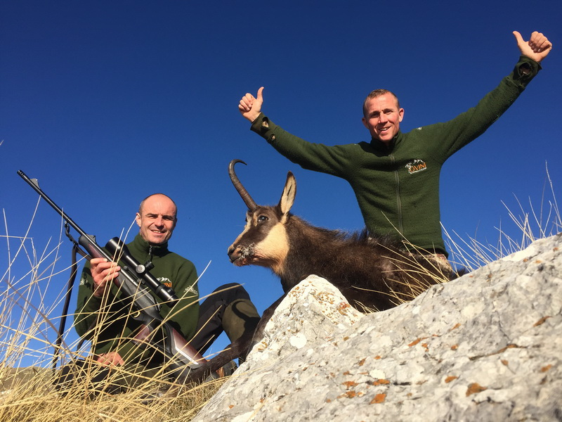 chasse chamois alpes franaises ovini expeditions jerome