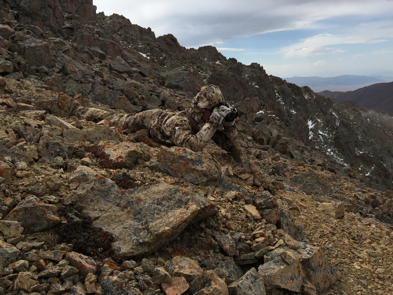 camouflage parfait chasse maral kazakhstan ovini expeditions 2015