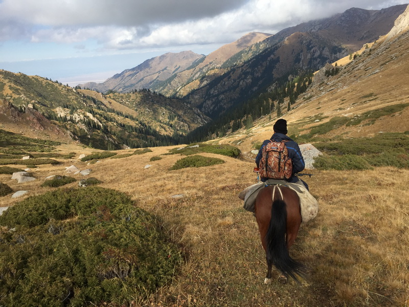 cheval indispensable deplacement chasse maral kazakhstan ovini expeditions 2015
