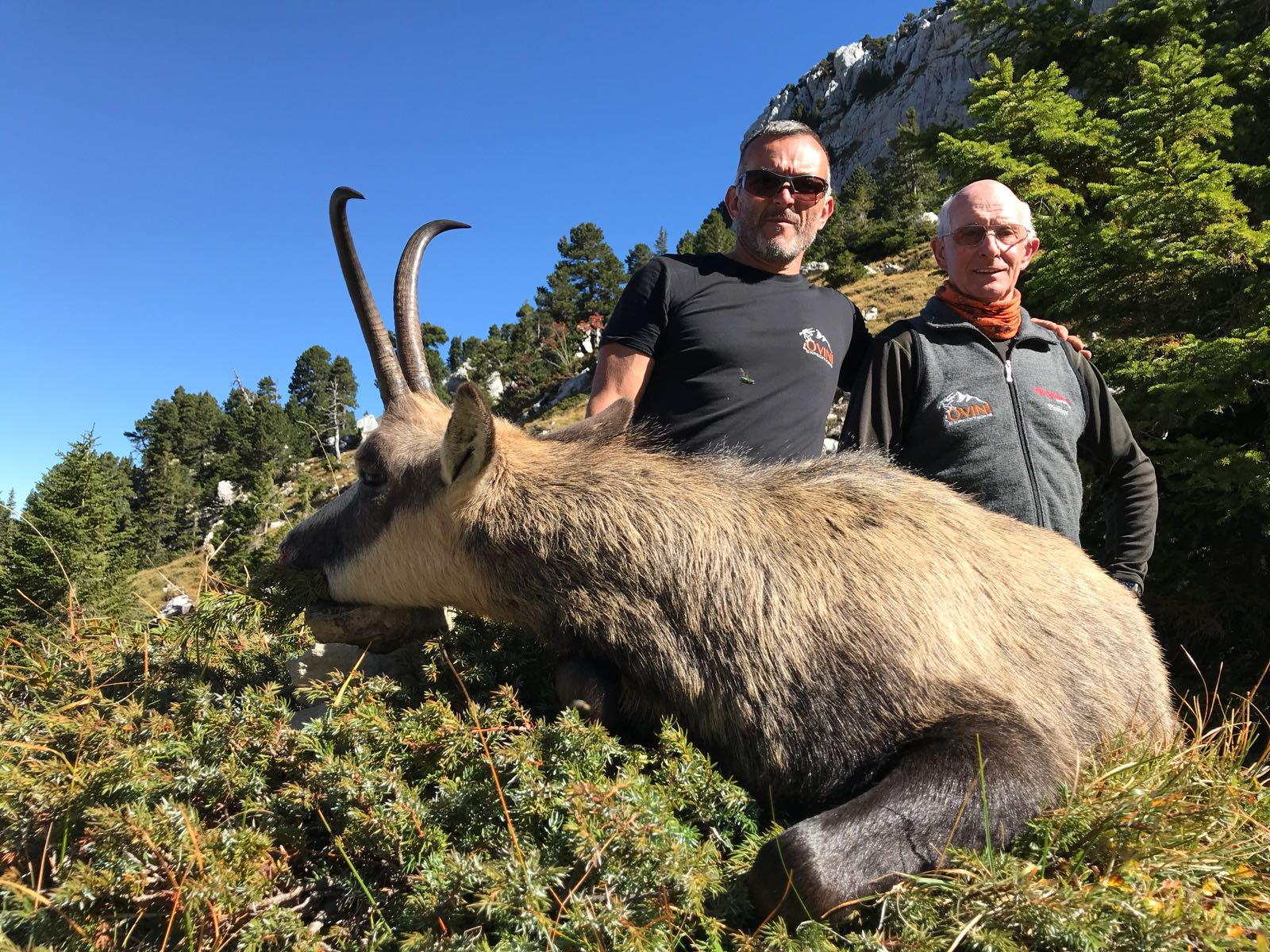 d chamois chevre medaillable chasse france ovini expeditions