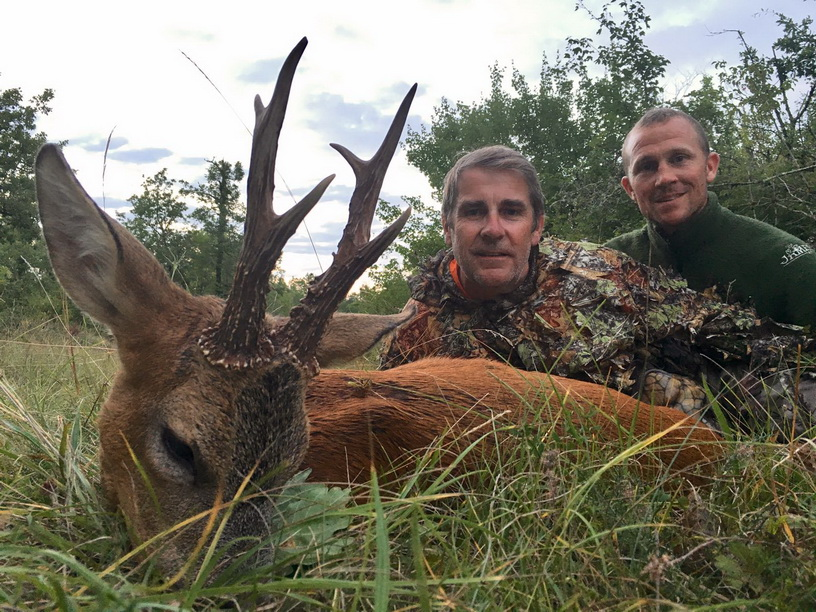 g4b chasse chevreuil ete france ovini expeditions