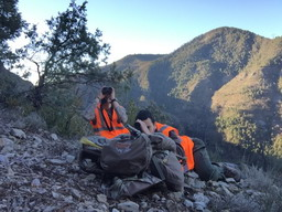 1-05julian-guide-par-anthony-ovini-chasse-mouflon-alpes-maritimes