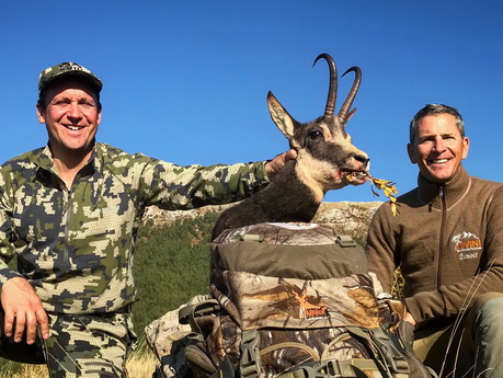 ovini expeditions chasse chamois alpes sud france