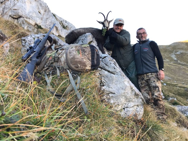 americain chartreuse chasse ovini expeditions france