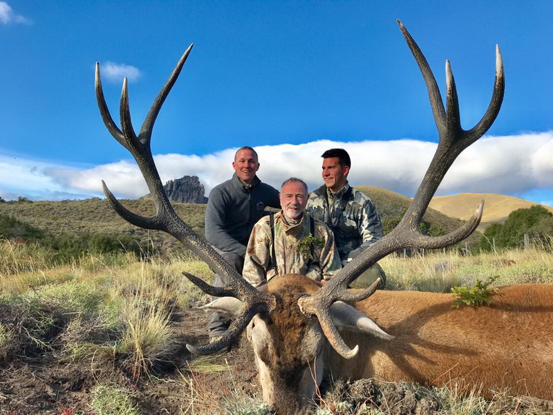 ovini expeditions argentine chasse cerf