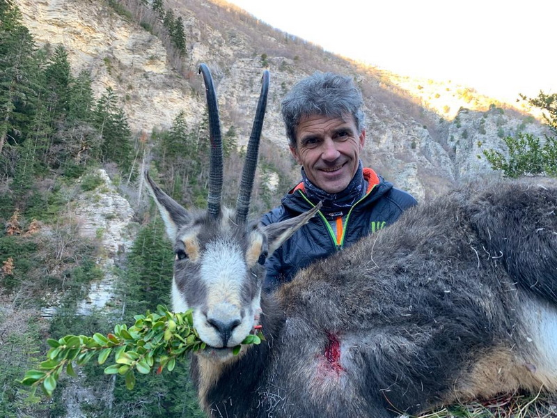 Ovini expeditions chasse chamois france alpes nord 2019