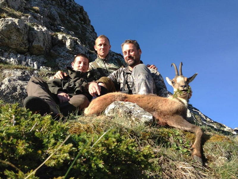 chamois cantabrique ovini expeditions